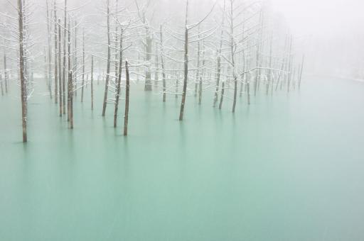 写真家・ケント白石さんによるもう一枚の「青い池」がナショナルジオグラフィックに掲載されています